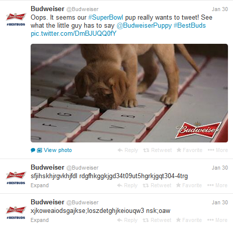 Budweiser-SuperBowl-Drunk-Puppy-Tweets