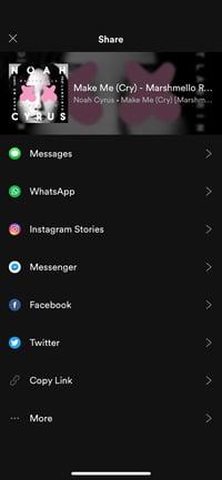Spotify Instagram Story
