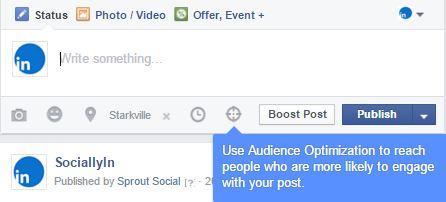 audience_optimization1